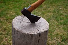砍在一个树桩,砍的木柴 库存照片