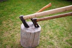 砍在一个树桩,砍的木柴 免版税库存图片