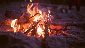 砍木近的营火的年轻人 4K,慢动作 影视素材