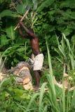 砍木头的人在农村海地 免版税库存照片