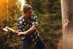 砍木头的坚强的伐木工人在森林里 免版税库存照片
