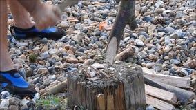 砍营火的木头 股票视频