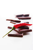 砍黑暗的巧克力用精选新鲜的炽热的辣椒 库存照片