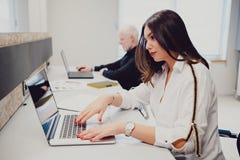 研究一台膝上型计算机的严肃的女孩在办公室 库存照片