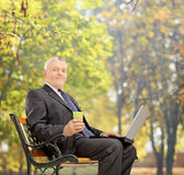 研究一台膝上型计算机的成熟商人在公园 库存照片