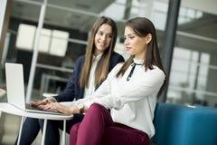 研究他们的膝上型计算机的两名相当白种人女实业家 图库摄影