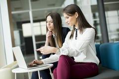 研究他们的膝上型计算机的两名相当白种人女实业家 免版税图库摄影
