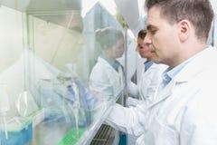 研究员在准备样品的科学实验室 免版税库存照片