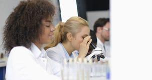 研究员繁忙的科学队做化学制品的实验室科学家的试验Researchs 股票录像