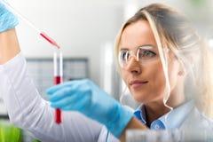 研究在实验室里的年轻可爱的女性科学家 免版税图库摄影