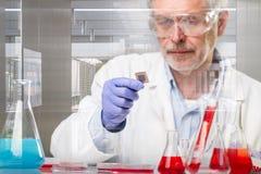 研究在现代科学实验室的资深生命科学研究 库存图片