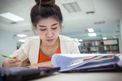 研究教育,妇女工作 免版税库存图片