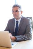 研究膝上型计算机的商人在会议 库存图片