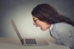 研究计算机的恼怒的愤怒的女实业家,尖叫 免版税库存照片