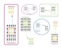 研究过程抽样从人口指标的套 库存图片