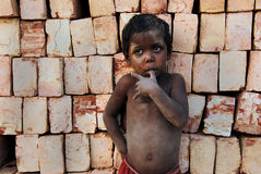 砖厂子项印度 免版税图库摄影