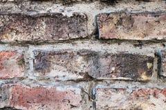 砖和混凝土 图库摄影