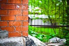 砖和绿色 库存图片