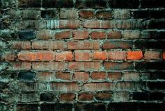 砖困厄的老墙壁 免版税库存图片