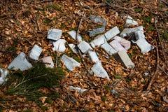 砖在森林里 库存照片