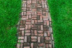 砖在绿色领域背景的步行方式 库存照片