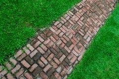 砖在绿色领域背景的步行方式 免版税库存照片