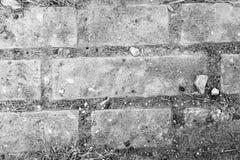 砖地板 免版税库存图片