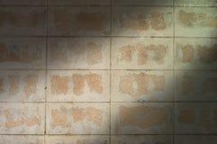 砖块墙壁和光背景 免版税图库摄影
