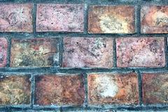 砖块小径 库存图片