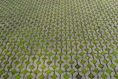 砖块石头有绿草的地垫作为背景或t 图库摄影