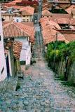 砖城市女孩街道墙壁 库存照片