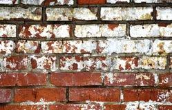 砖墙。 库存照片