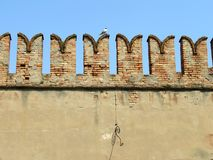 砖墙在有海鸥的威尼斯 免版税库存图片