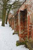 砖墙在西奥多镇在普希金,学术PR 14 库存照片
