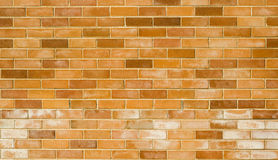 砖墙新的细节 库存图片