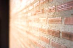 砖墙有轻的太阳背景和倾斜看法 免版税图库摄影