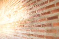 砖墙有轻的太阳背景 免版税图库摄影