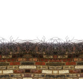 砖墙横幅背景 图库摄影