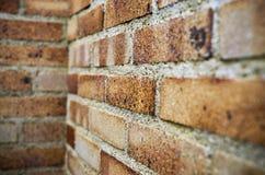 砖墙的角落 免版税库存照片
