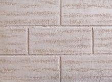 砖墙纹理背景,特写镜头,选择聚焦 平原色的灰泥,垂直的砖样式 免版税库存照片