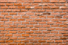 砖墙纹理,砖详细的结构在自然patte的 库存图片