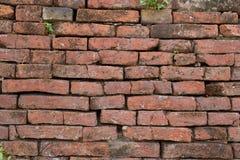 砖墙背景纹理 免版税库存图片