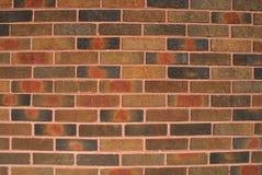 砖墙背景设计元素 免版税库存图片