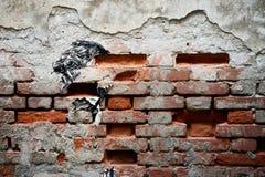 砖墙面孔 免版税库存照片