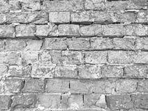 砖墙 剥落脏的破裂的墙壁的老片状白色油漆 镇压,刮,剥老油漆和膏药在背景 图库摄影