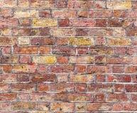 砖墙 红色和三文鱼纹理 库存图片