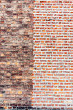 2砖墙 红色和多色纹理 图库摄影