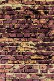 砖墙(背景和纹理) 免版税库存照片