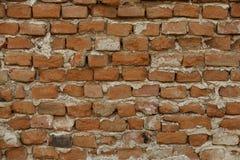 砖墙 库存照片