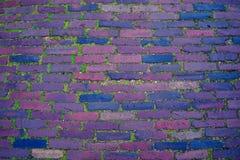 砖小径路背景,与青苔的纹理 免版税图库摄影